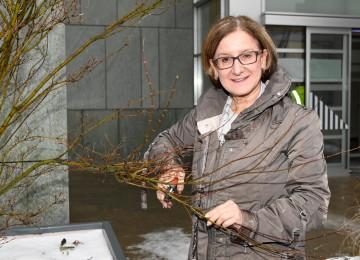 Richtiger Baumschnitt bringt Gesundheit und reichhaltige Ernte