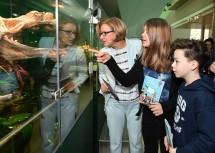 Landeshauptfrau Johanna Mikl-Leitner mit Alexander und Anna Maria im Museum Niederösterreich.