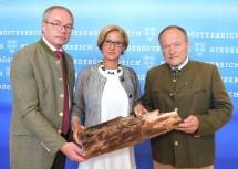 LH-Stellvertreter Stephan Pernkopf, Landeshauptfrau Johanna Mikl-Leitner und Landwirtschaftskammerpräsident Hermann Schultes (von links nach rechts).