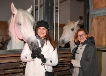 Advent in der Stallburg der Spanischen Hofreitschule:  Tierschutz-Lady Maggie Entenfellner und Landeshauptfrau Johanna Mikl-Leitner