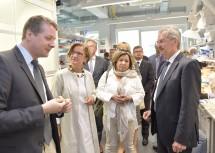 Am IST Austria sind rund 600 Forscher und Studenten tätig.