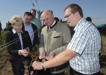 Landeshauptmann Pröll sprach mit betroffenen Landwirten, darunter etwa Markus Laurer, Weinbauer aus Deinzendorf.